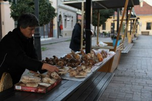 Woman selling mushrooms in Kosice, Slovakia