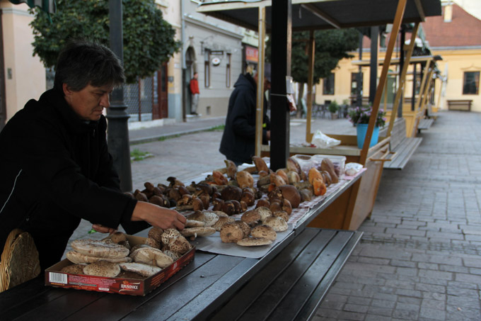 Woman selling mushrooms in Kosice, Slovakia