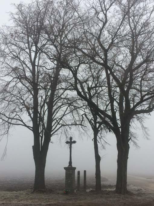 cross under trees