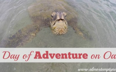 A Day of Adventure on Oahu