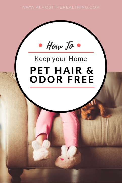 pet-hair-and-odor