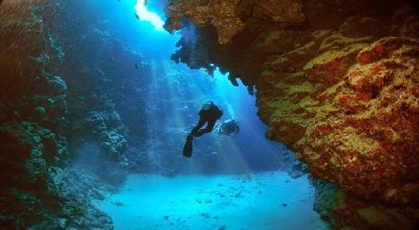 معلومات مميزة عن البحر الأحمر المرسال