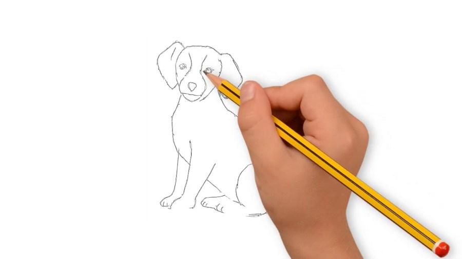 كيف اتعلم الرسم بسهولة المرسال