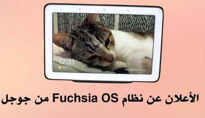 نظام Fuchsia OS من جوجل يظهر من جديد بشكل رسمي
