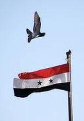 Sobre Siria la comunidad internacional debe despertar