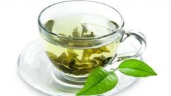 افضل شاي اخضر للتنحيف مجرب