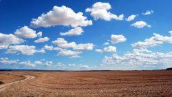 تفسير حلم شراء أرض في المنام