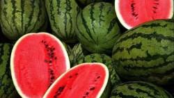 تفسير حلم شراء البطيخ في المنام