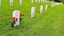 تفسير حلم اني في المقابر في المنام