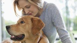 تفسير حلم الكلب في المنام للمطلقة