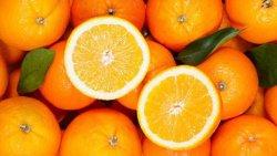تفسير حلم البرتقال الحامض في المنام