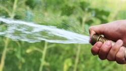 تفسير حلم رش الماء بالخرطوم في المنام