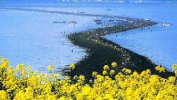 تفسير حلم رؤية البحر ينشق في المنام