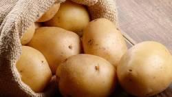 تفسير حلم رؤية البطاطس للنابلسي