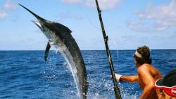 تفسير حلم اصطياد أسماك ذات أحجام كبيرة بالسنارة في المنام