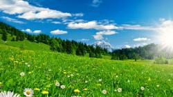 تفسير حلم الطقس الجميل في المنام لابن سيرين