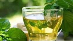 هل الشاي الأخضر يمنع الحمل