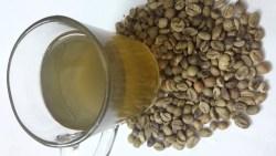 تفسير حلم القهوة الخضراء في المنام