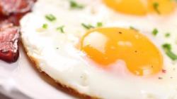 تفسير حلم أكل البيض في المنام