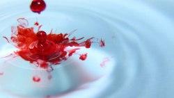 تفسير حلم خروج الدم من الفرج في المنام للإمام الصادق