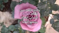 كلام غزل عن الورد