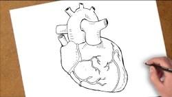 تفسير حلم رسم القلب في المنام