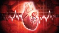 تفسير حلم دقات القلب تنبض بسرعة في المنام