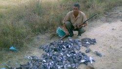 تفسير حلم صيد الطيور في المنام