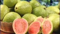 تفسير حلم أكل الجوافة في المنام