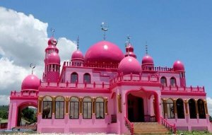 بالصور.. مسجد فريد من نوعه باللون الزهري في الفلبين