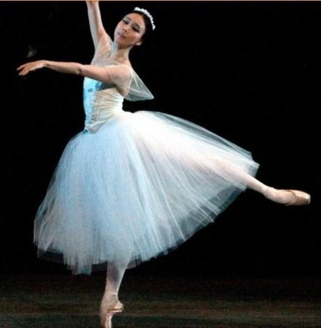 Professional dance tulle dress font b ballet b font font b tutu b font font b