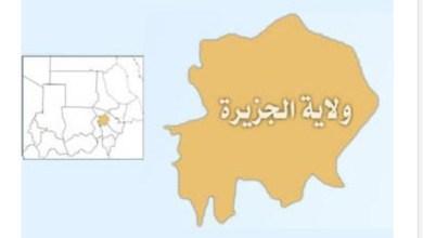 Photo of والي الجزيرة: تسخير إمكانيات الولاية لعودة مشروع الجزيرة لسابق عهده