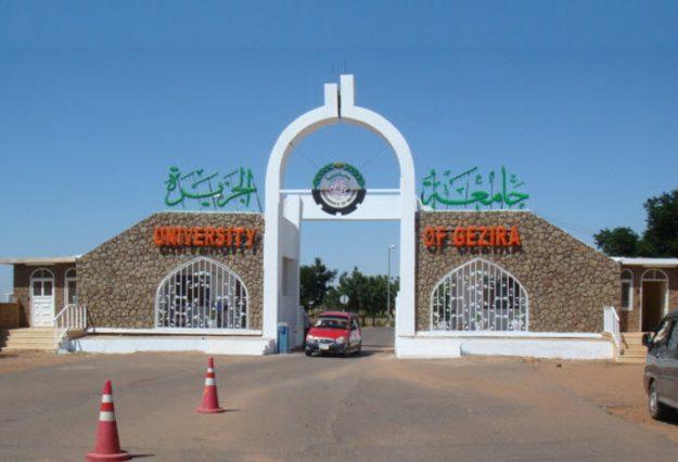 جامعة الجزيرة
