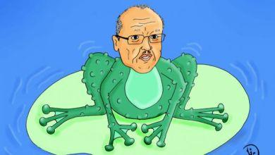 Photo of وزير الصحة : الضفادع تحتوي على بروتينات!