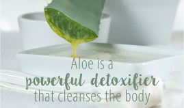 aloe detox and cleanse