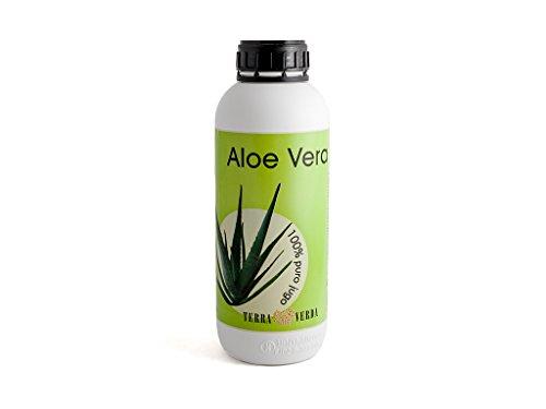 TERRA VERDA – Zumo Aloe Vera 1L
