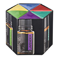 Essential Oil Bundle