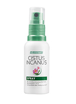 Cistus-incanus-spray