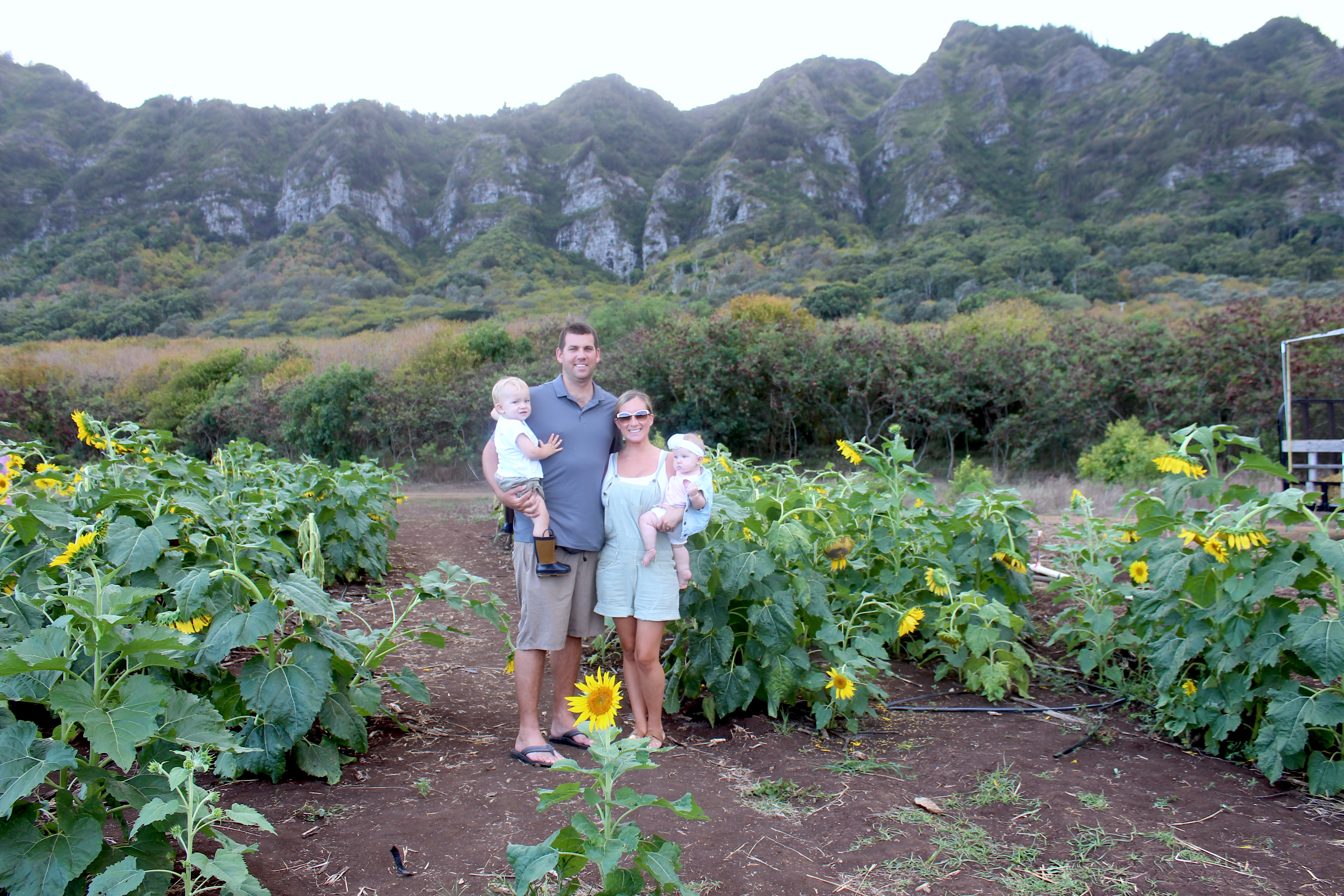 """<span class=""""entry-title-primary"""">Sunflowers, Sunshine and of Course, Some Pumpkins</span> <span class=""""entry-subtitle"""">Our Afternoon at the Waimanalo Country Farms Hawaii Pumpkin Patch</span>"""