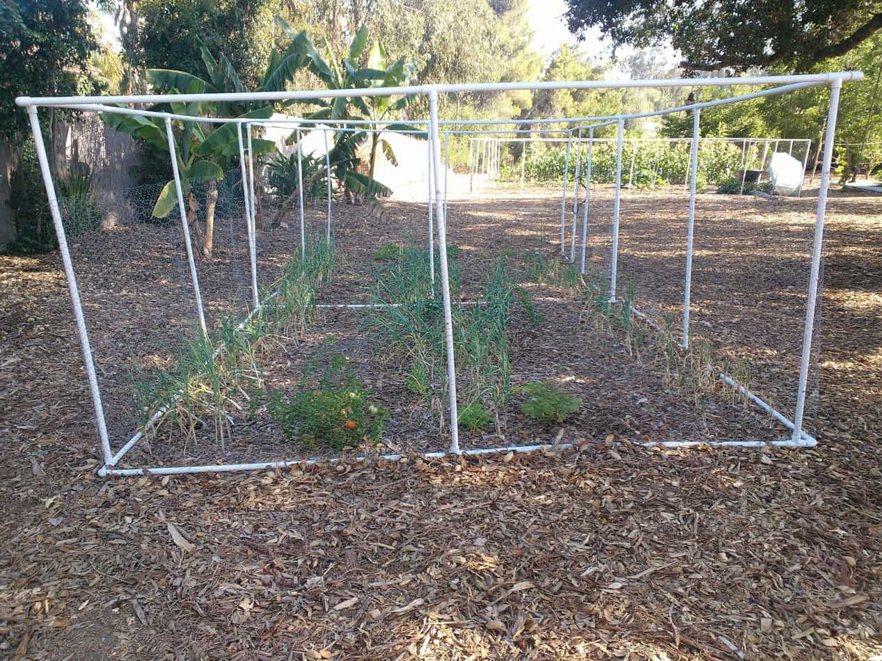 Aloha Farms Food Forestu0027s Portable Garden Fence Of PVC And Chicken Wire