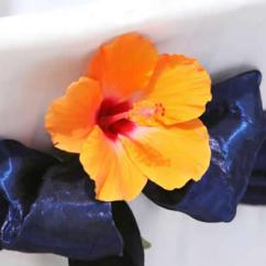 Hawaiian Chair Covers Where To Reupholster Dining Room Chairs Cover For Wedding In Hawaii Orange Hibiscus Against A White With Midnight Blue Sash