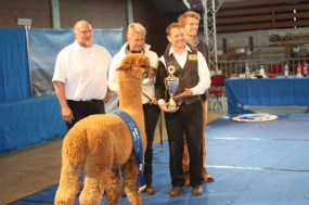 Best of Show, Alsfeld 2014