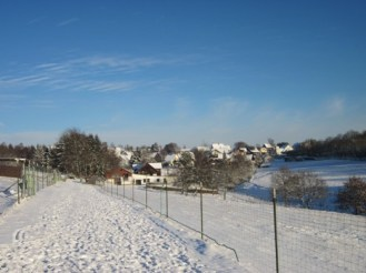Alpakatreibgang im Winter