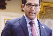 النائب- هيثم الحريري