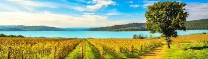 Podere Marella, Castiglione del Lago (PG)