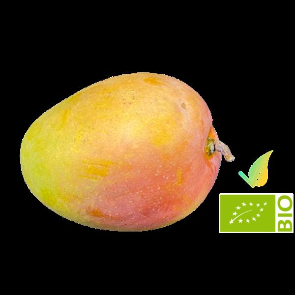 Mango Biologico Siciliano