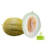 Melone Invernale Biologico