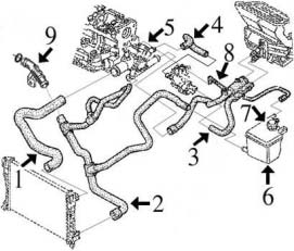 Circuit de refroidissement LAGUNA I 1.9 Dti (100cv