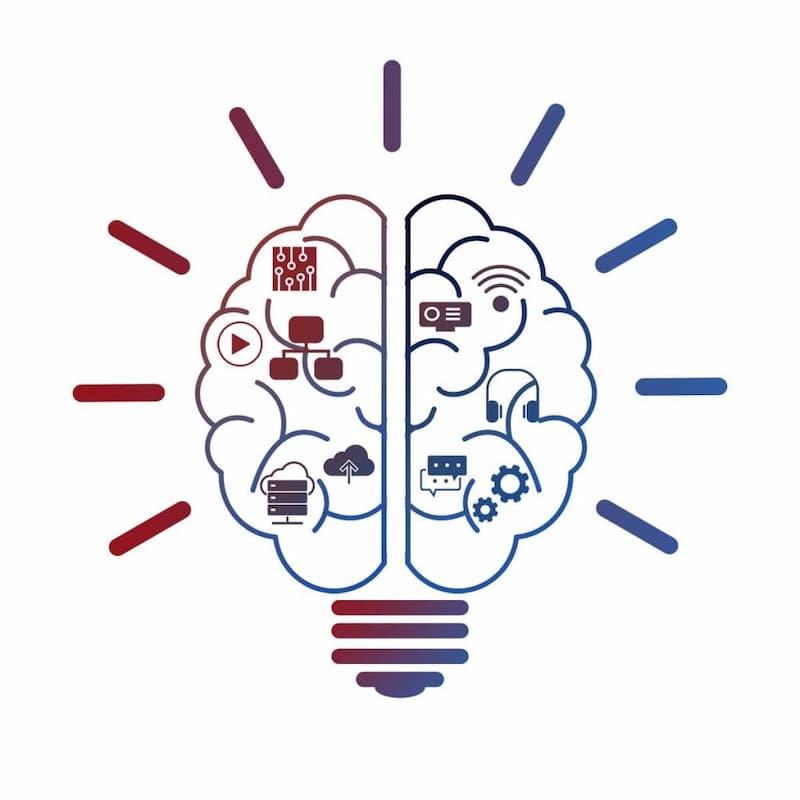 Las habilidades y el cerebro