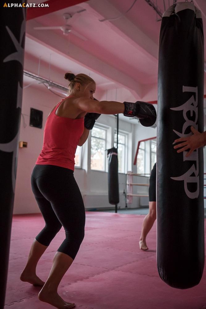 Alphacatz Boxing Training